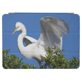 USA, Florida, St. Augustine, Egret iPad Air Cover