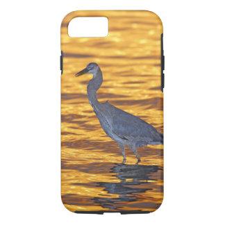 USA, Florida, St. Petersburg, Fort De Soto Park. iPhone 8/7 Case