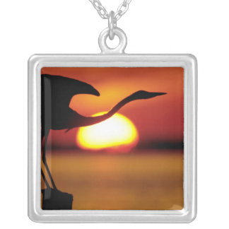 USA, Florida, St. Petersburg, Fort De Soto Silver Plated Necklace