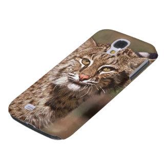 USA, Florida, swamp ecosystem Galaxy S4 Case