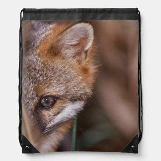 USA, Florida, Swamp Fox Drawstring Bag