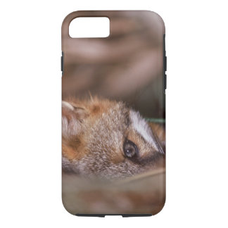 USA, Florida, Swamp Fox iPhone 8/7 Case