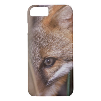 USA, Florida, Swamp Fox iPhone 8/7 Case