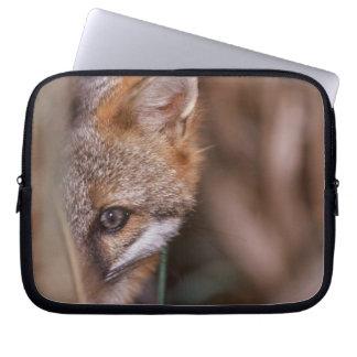 USA, Florida, Swamp Fox Laptop Sleeve