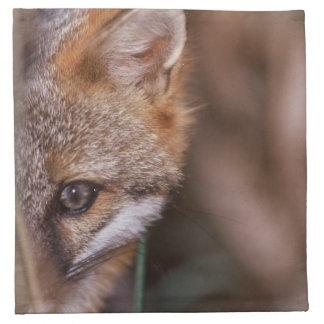 USA, Florida, Swamp Fox Napkin