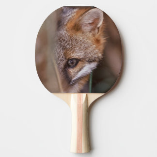 USA, Florida, Swamp Fox Ping Pong Paddle