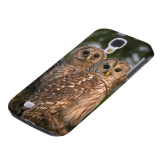 USA, Florida, Viera Wetlands. Three barred Galaxy S4 Case