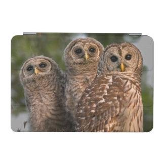 USA, Florida, Viera Wetlands. Three barred iPad Mini Cover