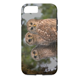 USA, Florida, Viera Wetlands. Three barred iPhone 8/7 Case
