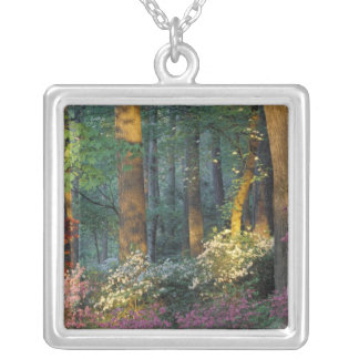 USA, Georgia, Callaway Gardens, Azalea forest. Silver Plated Necklace