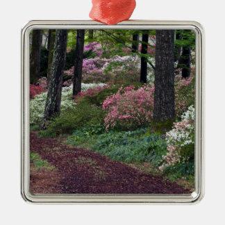 USA, Georgia, Callaway Gardens. Pathway Christmas Ornament