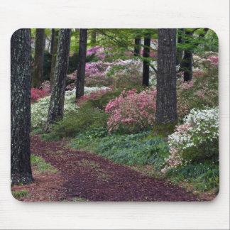 USA, Georgia, Callaway Gardens. Pathway Mouse Mat