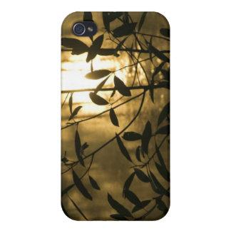 USA, Georgia, Callaway Gardens, Sunrise iPhone 4 Case