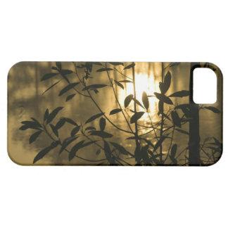 USA, Georgia, Callaway Gardens, Sunrise iPhone 5 Case
