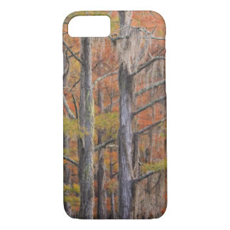 USA, Georgia, George Smith State Park, Cypress iPhone 8/7 Case