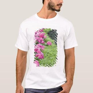 USA, Georgia, Pine Mountain. A boder of spring T-Shirt