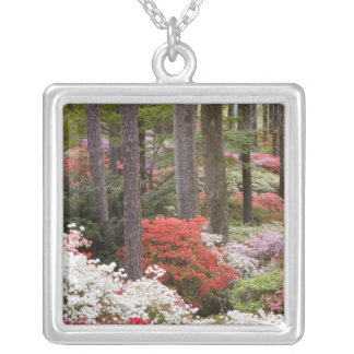 USA, Georgia, Pine Mountain. A forest of Square Pendant Necklace