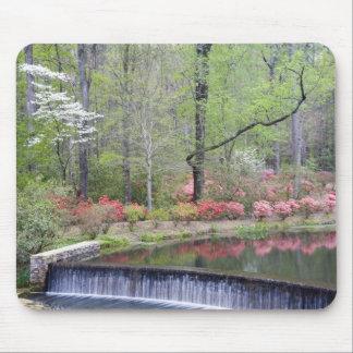USA, Georgia, Pine Mountain. A small waterfall Mouse Mat