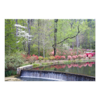 USA, Georgia, Pine Mountain. A small waterfall Photo