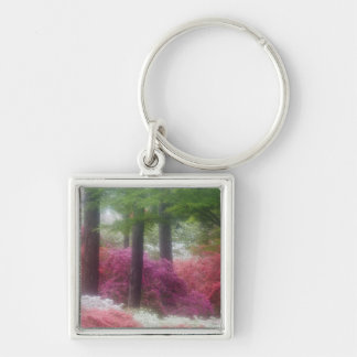 USA; Georgia; Pine mountain. Azaleas at Silver-Colored Square Key Ring