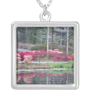 USA, Georgia, Pine Mountain. Viewing area by Silver Plated Necklace