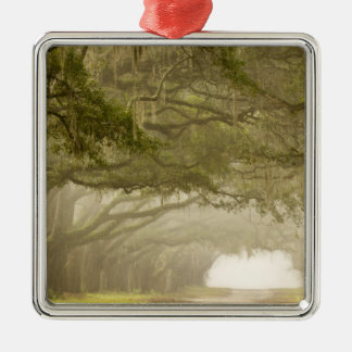 USA, Georgia, Savannah, An oak lined drive in Christmas Ornament