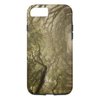 USA, Georgia, Savannah, An oak lined drive in iPhone 8/7 Case