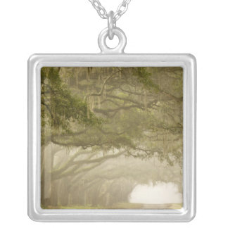 USA, Georgia, Savannah, An oak lined drive in Silver Plated Necklace