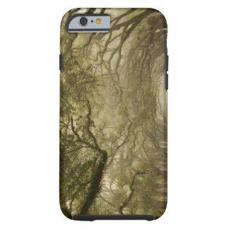 USA, Georgia, Savannah, An oak lined drive in Tough iPhone 6 Case
