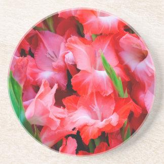 USA, Georgia, Savannah, Bouquet Of Gladiolus Coaster