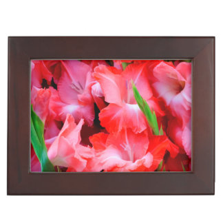 USA, Georgia, Savannah, Bouquet Of Gladiolus Keepsake Box