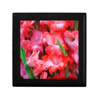 USA, Georgia, Savannah, Bouquet Of Gladiolus Small Square Gift Box