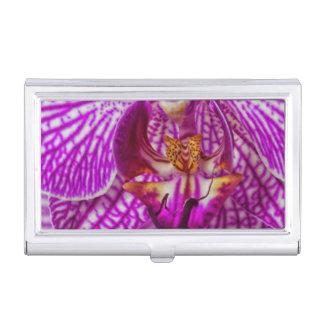 USA, Georgia, Savannah, Close-Up Of Orchid Business Card Holder