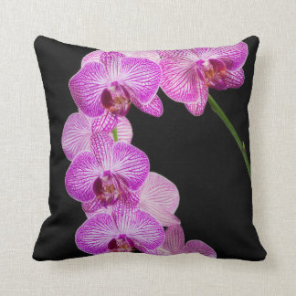 USA, Georgia, Savannah, Cluster Of Orchids 2 Cushion