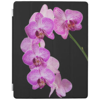 USA, Georgia, Savannah, Cluster Of Orchids 2 iPad Cover