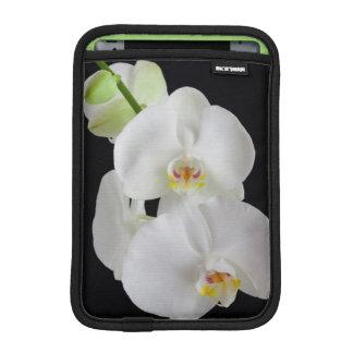USA, Georgia, Savannah, Cluster Of Orchids iPad Mini Sleeve