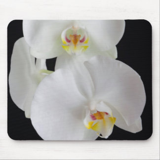 USA, Georgia, Savannah, Cluster Of Orchids Mouse Mat