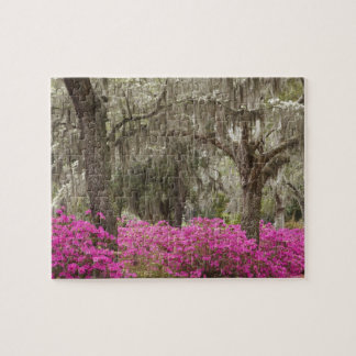 USA, Georgia, Savannah, Spring at Historic Jigsaw Puzzle