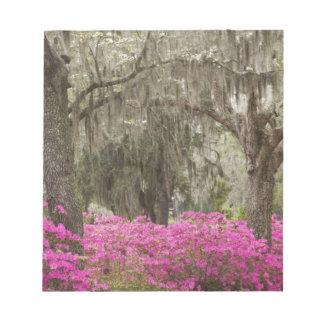 USA, Georgia, Savannah, Spring at Historic Notepad