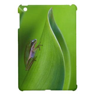 USA, Georgia, Savannah, Tiny Frog On A Leaf Case For The iPad Mini