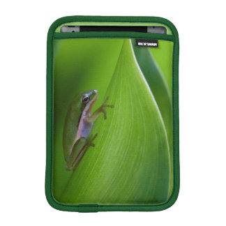USA, Georgia, Savannah, Tiny Frog On A Leaf iPad Mini Sleeves