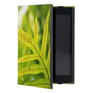 USA, Hawaii, Big Island. Tropical Green Fern iPad Mini Cover