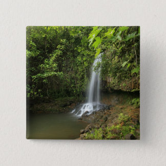 USA, Hawaii, Kalihiwai Stream. Waterfall. 15 Cm Square Badge