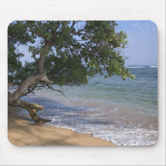USA, Hawaii, Kauai, beach scenic. RF) Mouse Mat