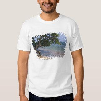 USA, Hawaii, Kauai, beach scenic. RF) Tee Shirt