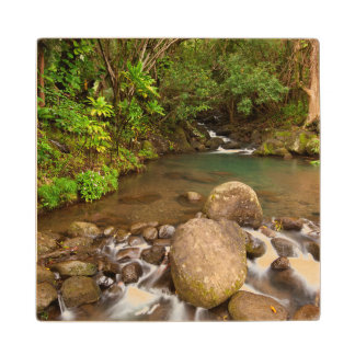 USA, Hawaii, Kauai. Creek Flowing Wood Coaster
