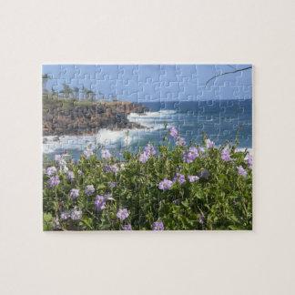 USA, Hawaii, Kauai, near Kapaa, northwest Puzzle
