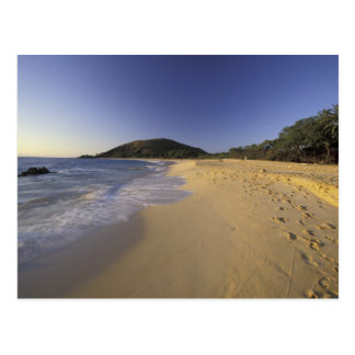 USA, Hawaii, Maui, Footprints in sand, Makena Postcard