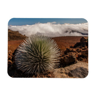 USA, Hawaii, Maui, Haleakala National Park Rectangular Photo Magnet