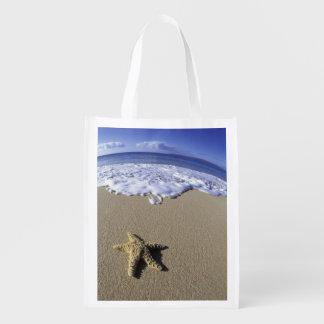 USA, Hawaii, Maui, Makena Beach, Starfish and